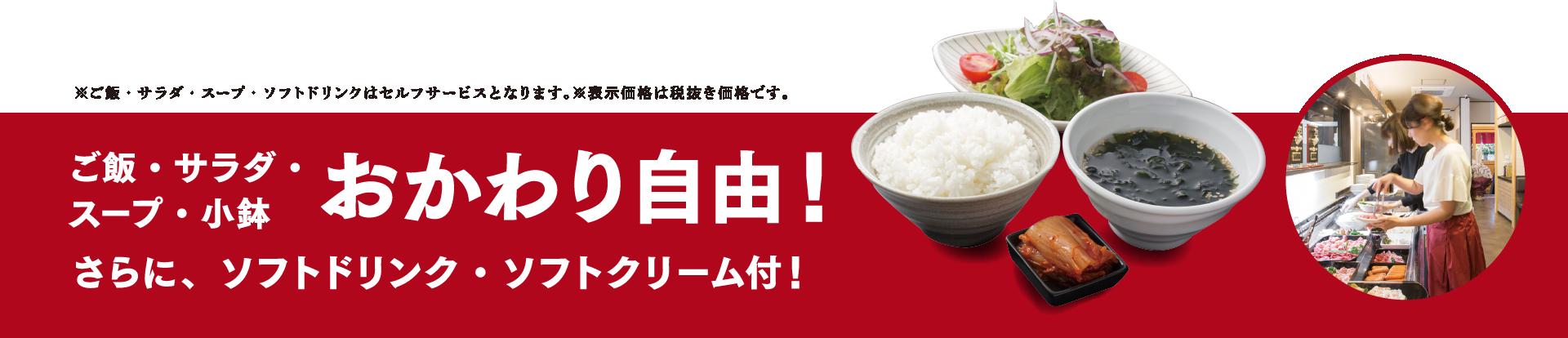 ご飯・サラダ・スープ・小鉢・おかわり自由。さらにソフトドリンク・ソフトクリーム付き